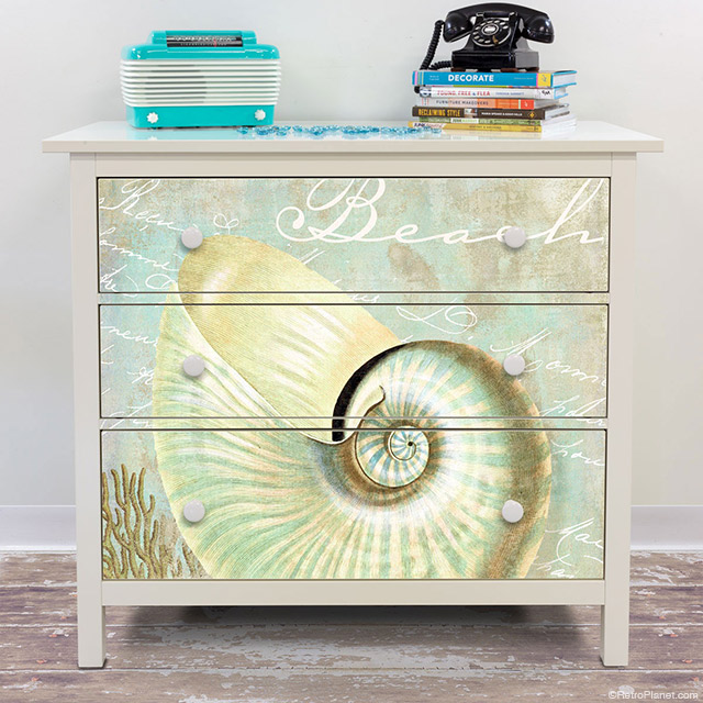 Nautilus Beach Shell Dresser Decals